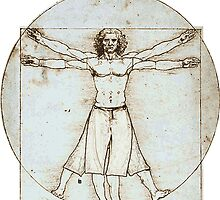 Decent Vitruvian Man by printmeister