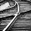 Rails 1 by James  Birkbeck