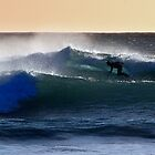 The Cutback by Garth Smith