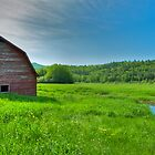 Red Barn, Adirondacks, Memorial Day 2011 by Michael Irrera