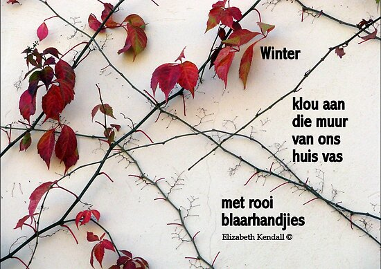 Winter by Elizabeth Kendall