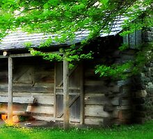 Summer Cottage © by Dawn M. Becker