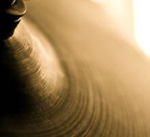 Rhythm Section by Gregoria  Gregoriou Crowe