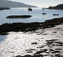 Harbour light by CliveOnBeara