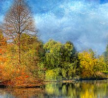 Reflections of Autumn - The Adelaide Royal Botanic Gardens by Mark Richards