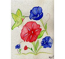 Patriotic Pansies and a Humming Bird Photographic Print