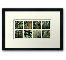 Alpine Rainforest Framed Print