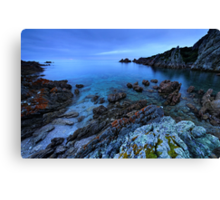 The very rocky Rocky Cape Canvas Print
