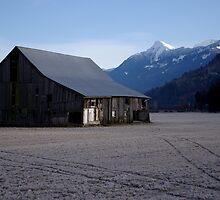 The Old Bailey Barn by Sheri Bawtinheimer