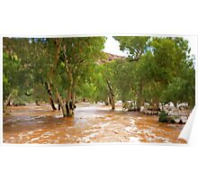 An Outback River Poster