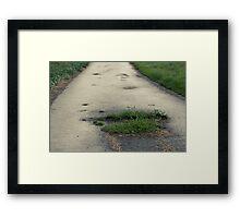 The Road Of Hope Framed Print