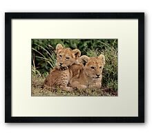 Out of Africa - Lean on Me Framed Print