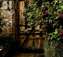 Secret Garden by Loren Goldenberg-Kosbab
