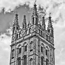 St Mary's Church, Warwick by Audrey Clarke