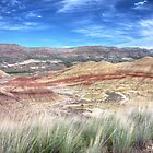 Painted Hills - Red Bands by CarrieAnn