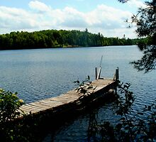 Sterling Pond, Adirdondacks, NY by linmarie