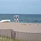 """At Rest on the Beach by Scott """"Bubba"""" Brookshire"""