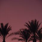 Palms in Purple by Marijane  Moyer