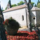 Brijuni chapel garden by machka