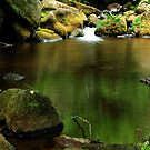 Padley Gorge 2 by Mike Topley
