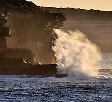 Backlit Splash by Ian Berry