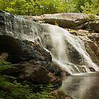 Purgatory Falls by Diana Nault