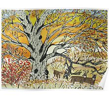 Whitetails and White Oak Tree Poster