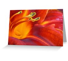 Overwhelming Beauty Greeting Card