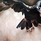 """""""Alight - The Wedge-tailed Eagle"""" by Michelle Caitens"""