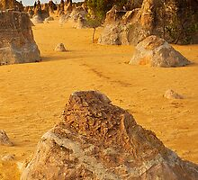 Nambung National Park Pinnacles 2 by Jaxybelle