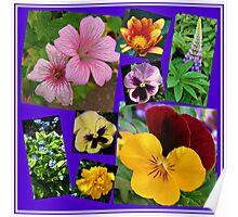 June Garden Flowers Collage Poster