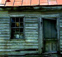 Old Virginia Homestead by Michelle Hamilton