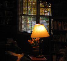 """""""Lamp in My Library Window"""" by dfrahm"""