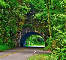 Tunnel to Cades Cove by Glenn Cecero