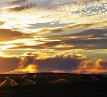 Sprinklers by Sunset by trueblvr
