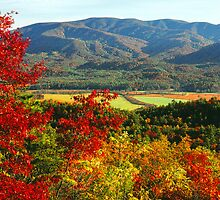 CADES COVE FROM RICH MTN. by Chuck Wickham