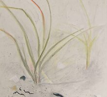 sea grass by doreen connors