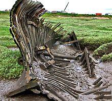 Skeleton Coast by Trevor Kersley