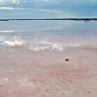 110619 Turquoise Coast Salt flats 2 by Jaxybelle