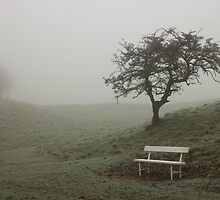 A single bench and tree shrouded in fog by Presence