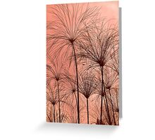 Plant Silhouettes  Greeting Card