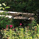 Morning in the Garden by Kate Eller