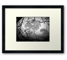 Coming, Ready or Not! Framed Print