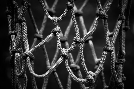 The Basketball Net by Charles Plant