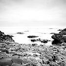 The Giants Causeway 3 B&W by Nicole Orlowski