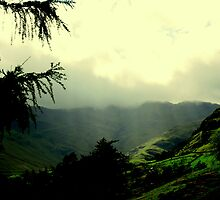 """""""LANGDALE LIGHT"""" by snapitnc"""