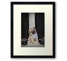 Mr. Vincent Framed Print