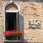 Sunny Window - Venice by Ruth Durose