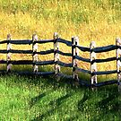 In Green Pastures by AngieDavies