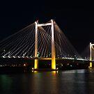 Bridge at Night by Jimmy Taylor